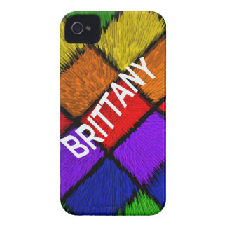 ブリッタニー(女性の名前) Case-Mate iPhone 4 ケース