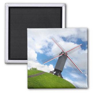 ブリュッヘの風車の磁石 マグネット
