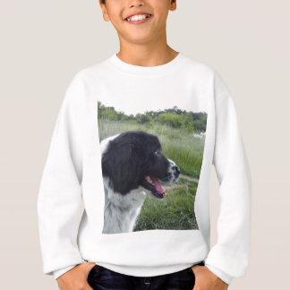 ブルガリアの牧羊犬 スウェットシャツ