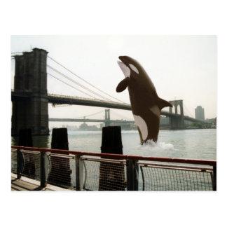 ブルックリン橋の郵便はがきの跳躍 ポストカード