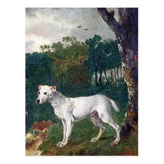 ブルテリアの絵画-ヴィンテージのファインアート ポストカード