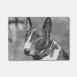 ブルテリア犬 ポストイット