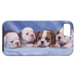 ブルドッグの子犬 iPhone SE/5/5s ケース