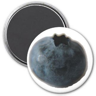 ブルーベリーの磁石 マグネット