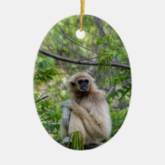 ブロンドのテナガザル猿- Hylobatesのlar セラミックオーナメント