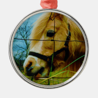 ブロンドのミニチュア子馬/馬の青空 メタルオーナメント