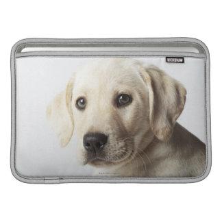 ブロンドのラブラドル・レトリーバー犬の子犬のポートレート MacBook スリーブ