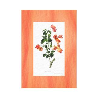 ブーゲンビリアの植物のヴィンテージのバックラムのオレンジ キャンバスプリント