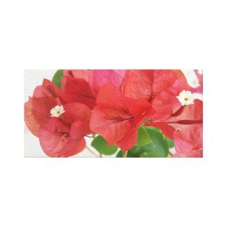 ブーゲンビリアの花のキャンバスのプリント キャンバスプリント