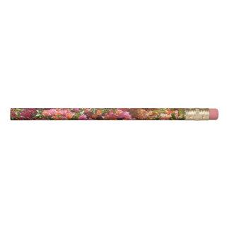 ブーゲンビリアの鉛筆 鉛筆