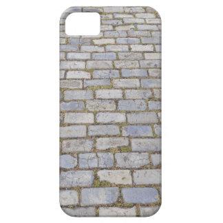 プエルトリコの玉石の石 iPhone SE/5/5s ケース