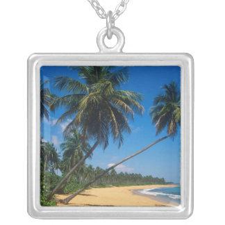 プエルトリコ、Isla Verdeのヤシの木 シルバープレートネックレス