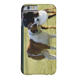 プラスチックディスクに戦っている2匹の犬 BARELY THERE iPhone 6 ケース