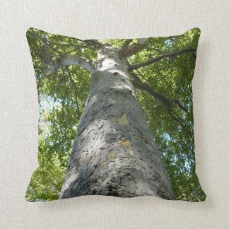 プラタナスの木の枕 クッション
