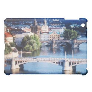 プラハIpadの例 iPad Miniカバー