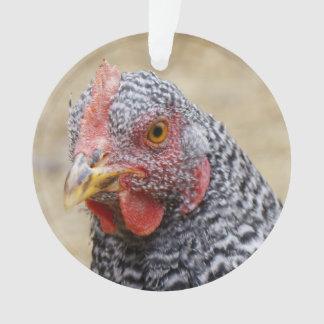 プリマスは石の雌鶏の写真を禁止しました オーナメント