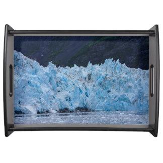 プリンス・ウィリアム湾アラスカの氷河 トレー