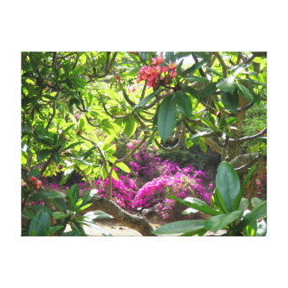 プルメリアの庭 キャンバスプリント