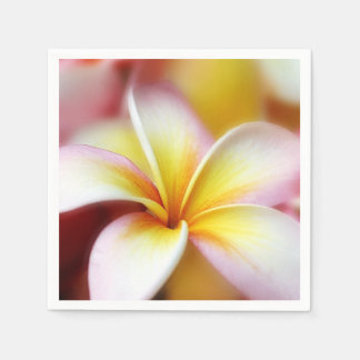 プルメリアの花のハワイのFrangipaniの花柄の花 スタンダードカクテルナプキン