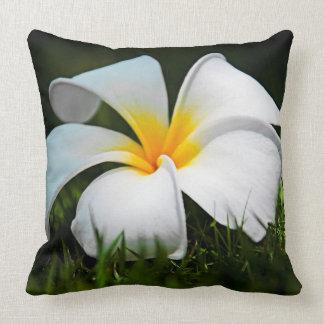 プルメリアのFrangipaniのハワイの白い花 クッション