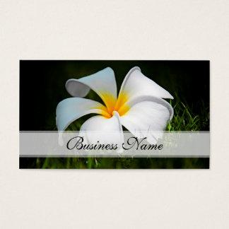 プルメリアのFrangipaniのハワイの白い花 名刺