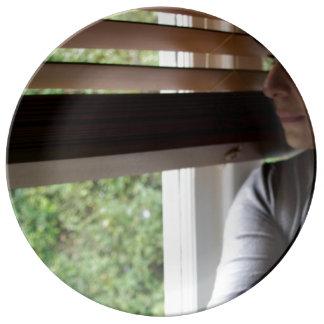 プレートのほんの少しの窓 磁器プレート