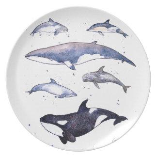プレートのスコットランドのクジラそしてイルカ プレート