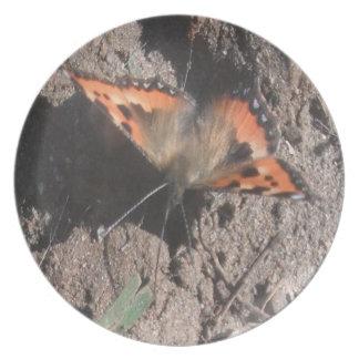 プレートの毛深い蝶土のあさること プレート