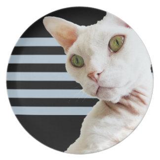 プレート2%のpipe%黒い灰色のストライプ|白いデボンのレックス猫 プレート