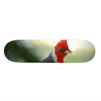 プロダクトをカスタマイズ スケートボード