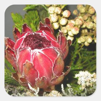 プロテアの花束 スクエアシール