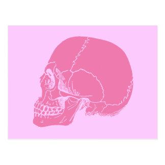 プロフィールのピンクのスカル ポストカード