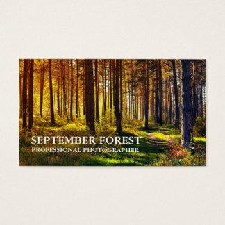 プロ写真撮影(森林) 名刺