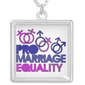 プロ結婚の平等 シルバープレートネックレス