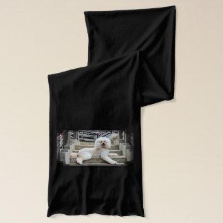 プードル- Brulee -トレーナー スカーフ