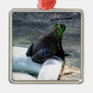 プールによって坐っているカエル メタルオーナメント