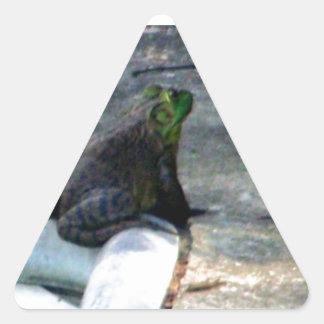 プールによって坐っているカエル 三角形シール