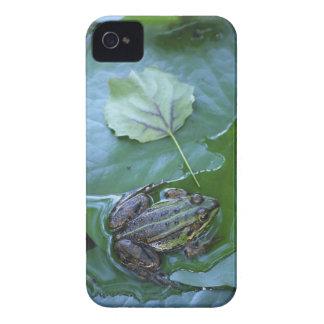 プールのカエル、Amperauen、ドイツ Case-Mate iPhone 4 ケース