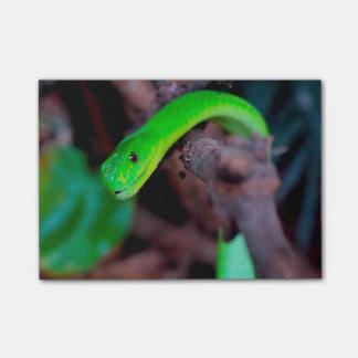 ヘビのスタイル ポストイット