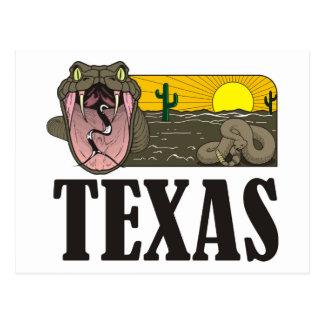 ヘビのテキサス州、米国: ガラガラヘビおよび砂漠 ポストカード