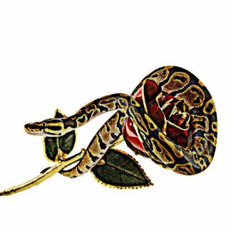 ヘビのフォトスカルプチャーの大蛇 写真彫刻(台付き)