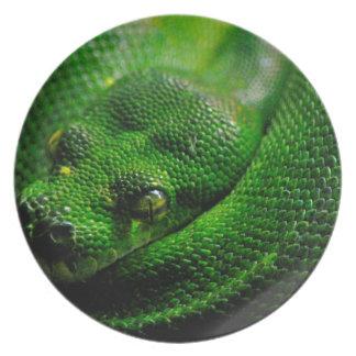 ヘビの国 プレート