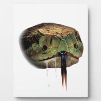 ヘビの毒液のかみ傷の顔 フォトプラーク
