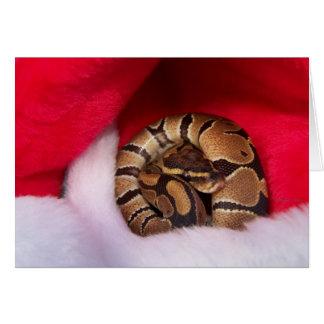 ヘビはサンタの帽子、球の大蛇でカールしました カード
