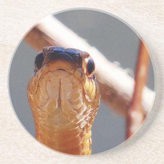 ヘビ コースター