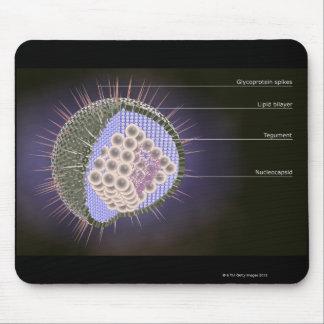 ヘルペス・ウイルスの構造 マウスパッド