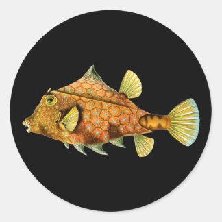 ヘルメットのCowfish 丸型シール