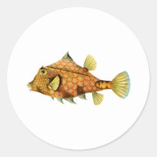 ヘルメットのCowfish 丸形シールステッカー