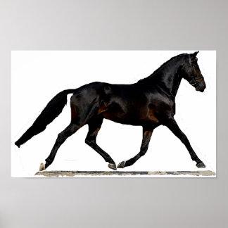 ベストファーレンの馬場馬術の馬ポスタープリント ポスター