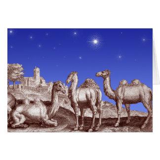 ベスレヘムのラクダの星 カード